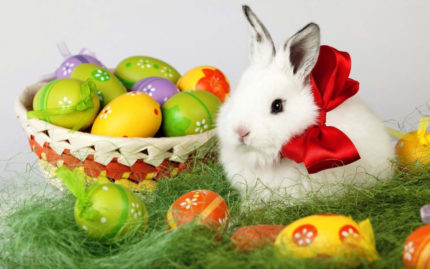 Enotes Enewsthe Rabbit Of Easter He Brings Of The Chocolate