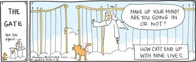 cat_gates_heaven
