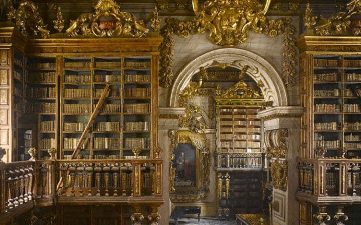 magnifique-bibliotheque-14-large