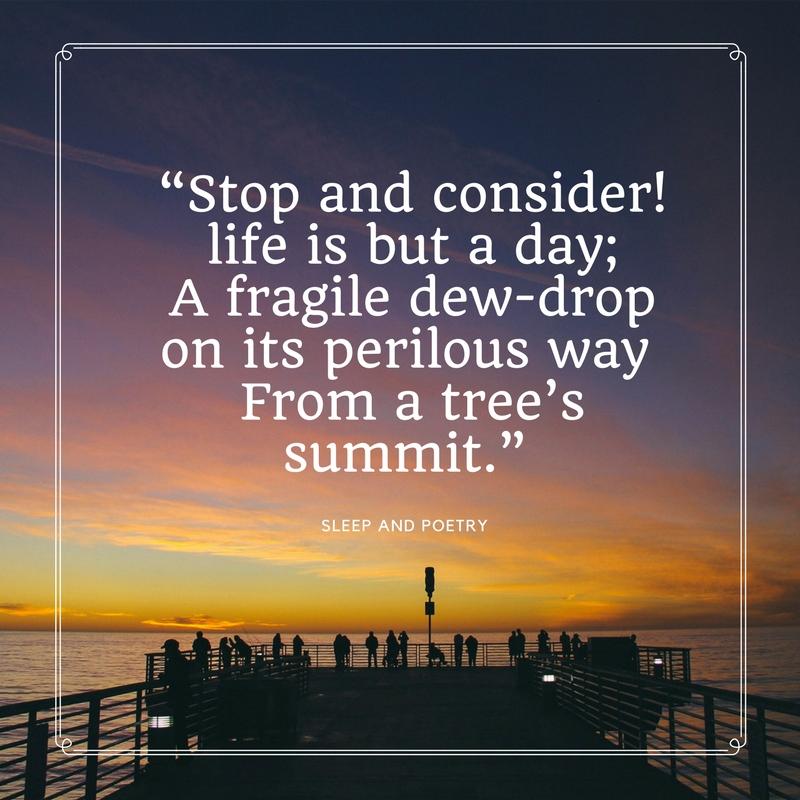 Stop&Consider